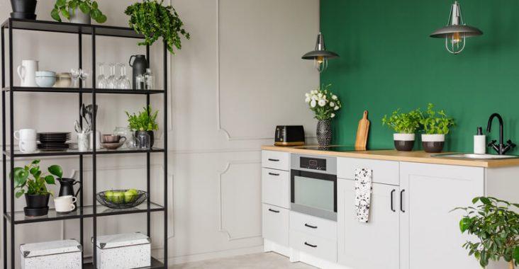 kamerplanten voor de keuken
